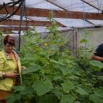 Gurķus, tomātus, ogas un citu nepieciešamo produkcijas gatavošanai lielākoties Aivars izaudzē vai salasa pats